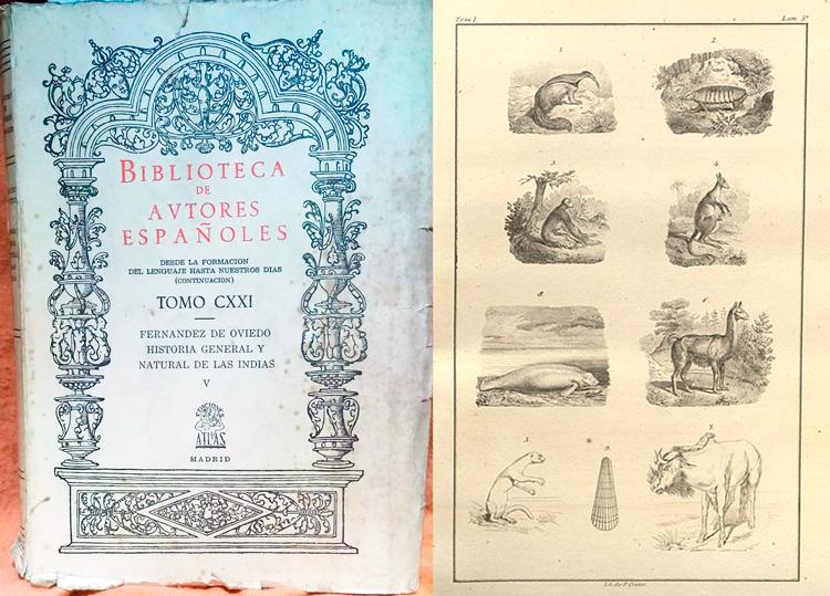 Historia general y natural de las Indias, Gonzalo Fernández de Oviedo y Valdés