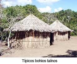 tainoBohio