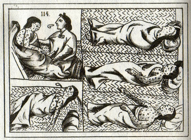 Genocidio indio - Epidemias de viruela en la América española
